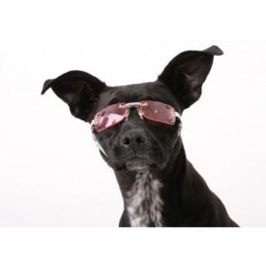 Doggles K9 Optix